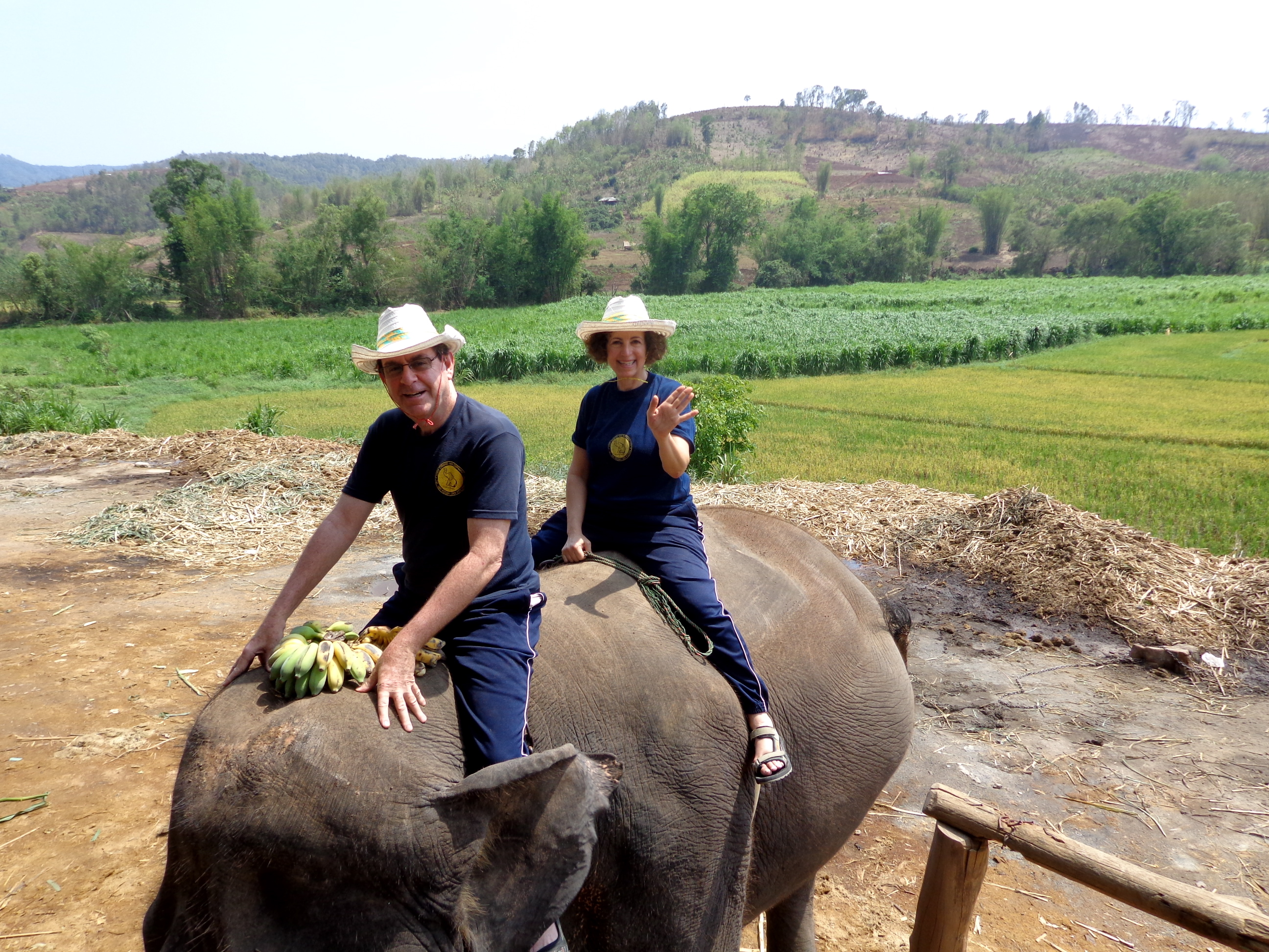 My parents riding an elephant in Chiang Mai, Thailand