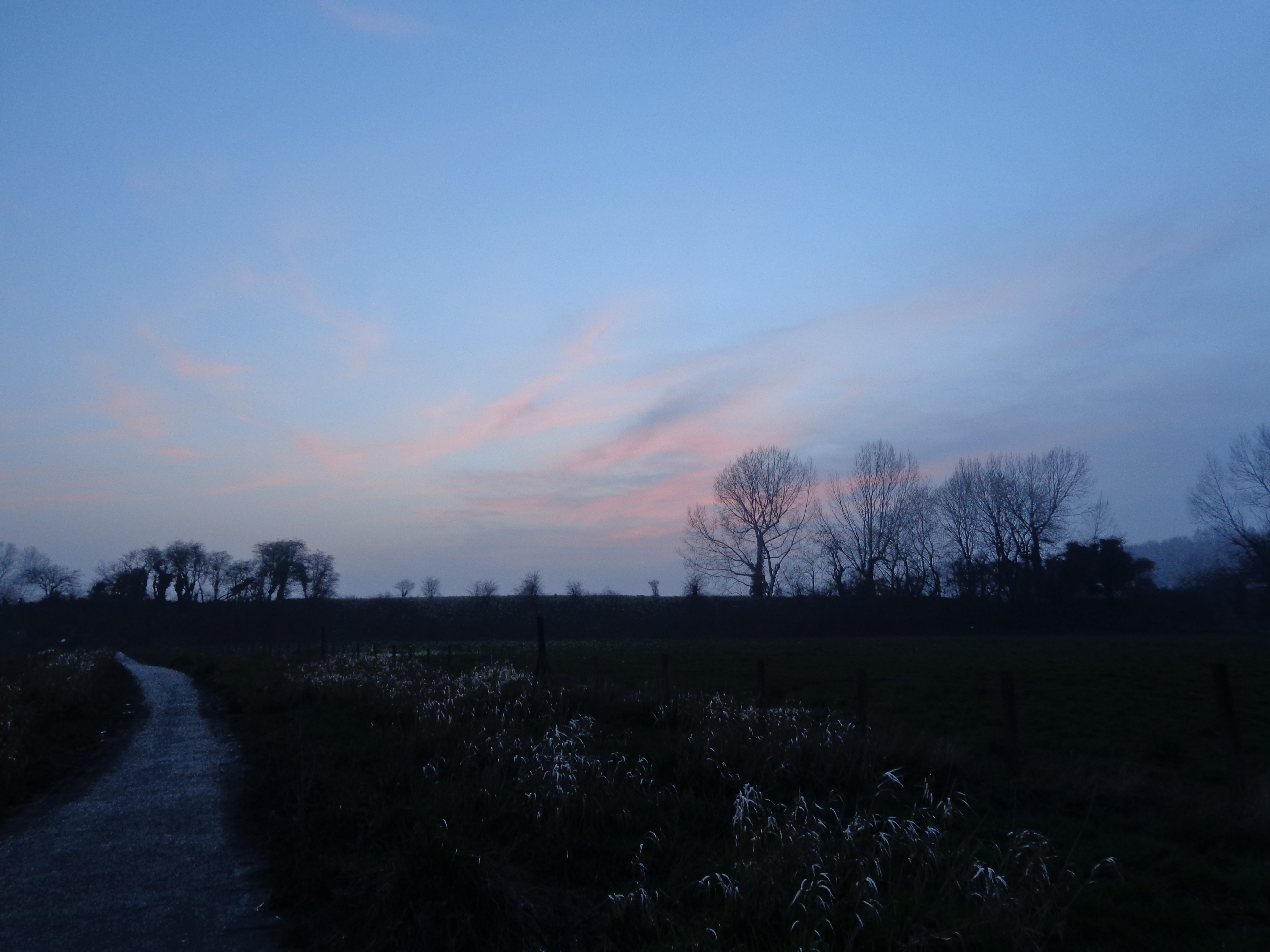 Canterbury running trail