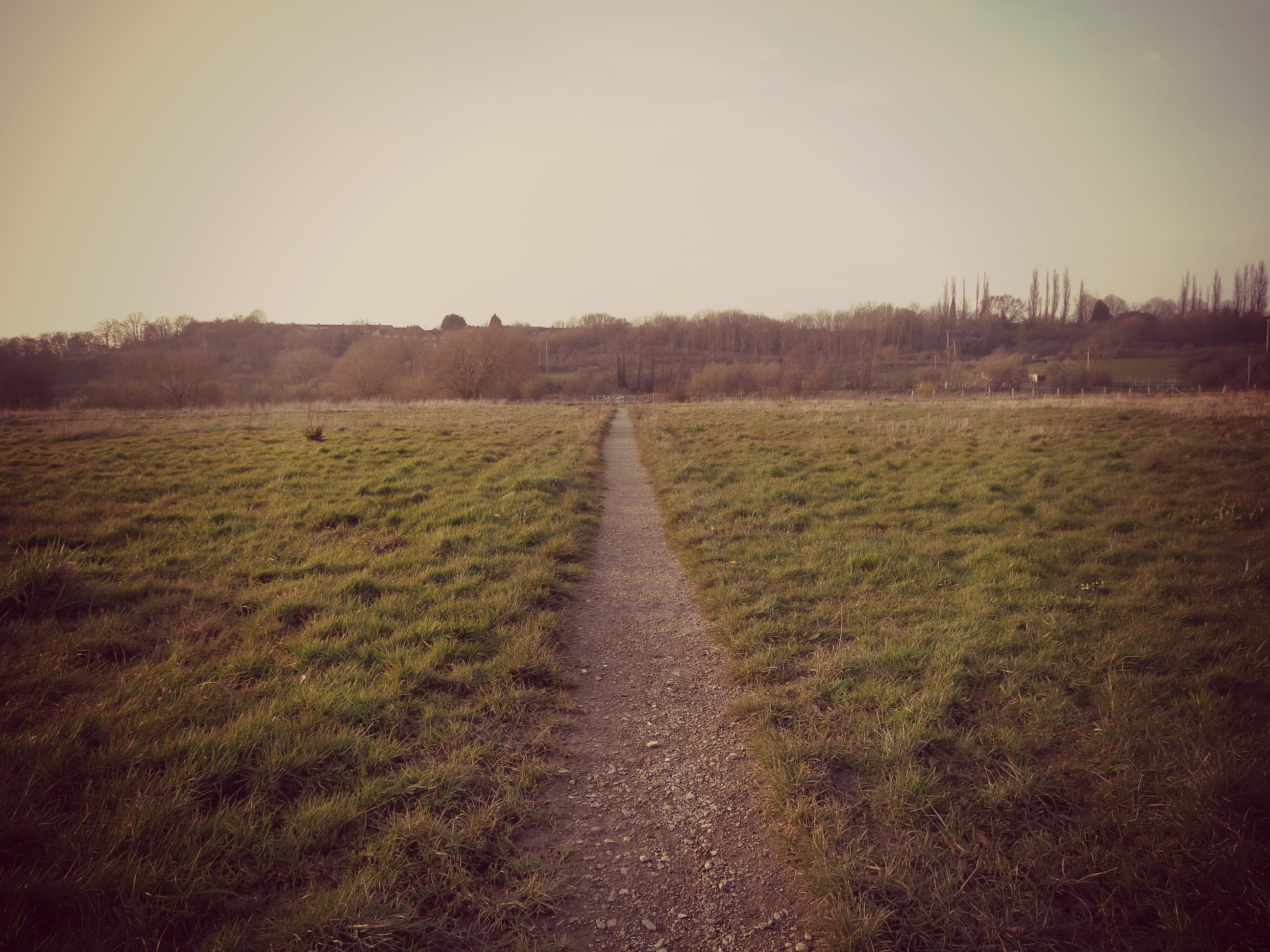 why travel: path