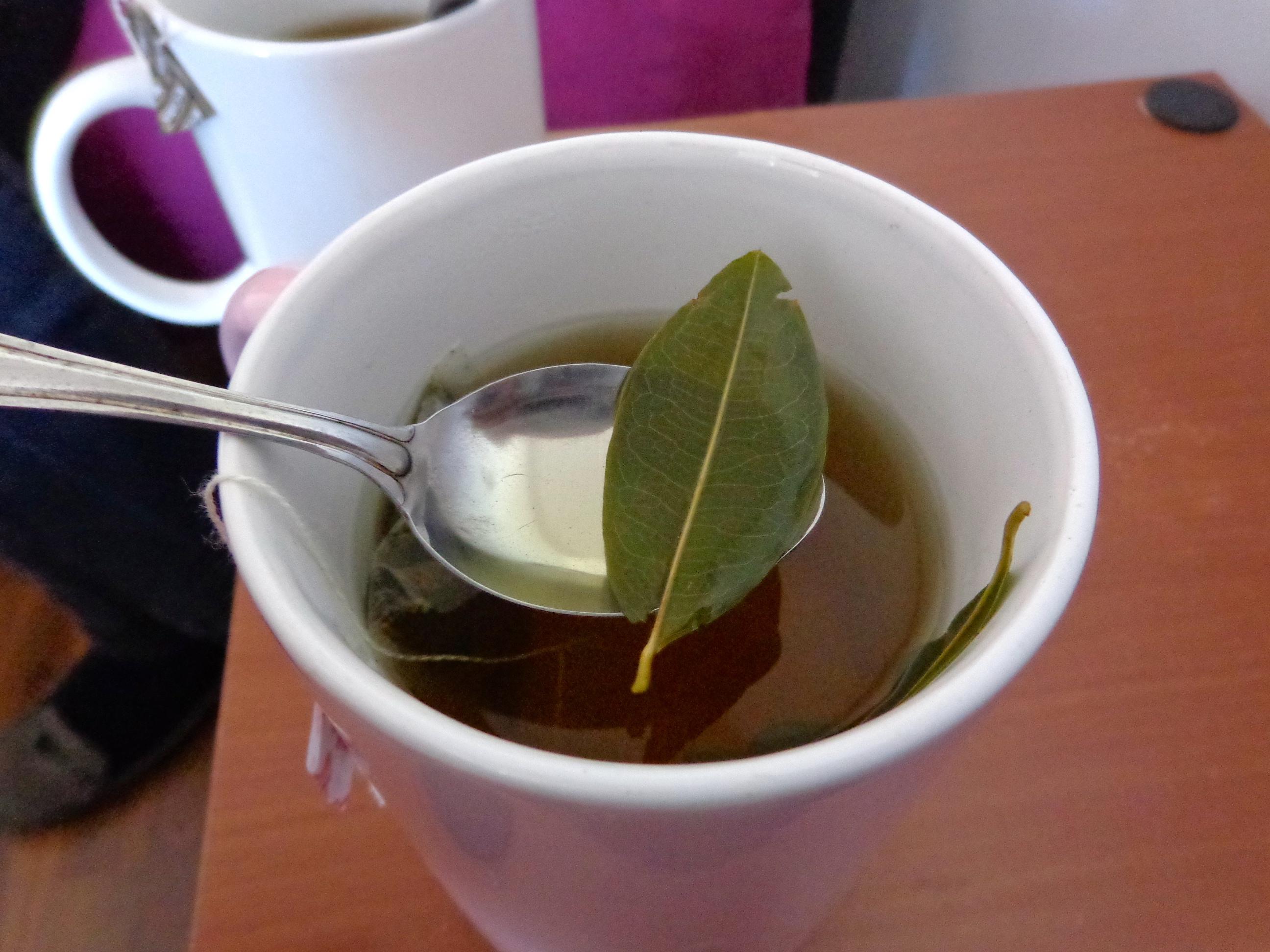 Coca tea with leaves in Puno, Peru