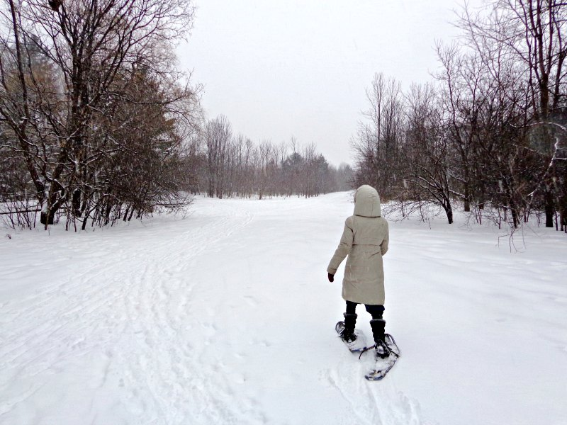 Snowshoeing in Ottawa at Christmas