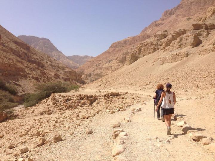 Hiking Wadi Arugot in Ein Gedi Nature Reserve