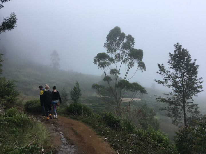Foggy hike in Nuwara Eliya, Sri Lanka