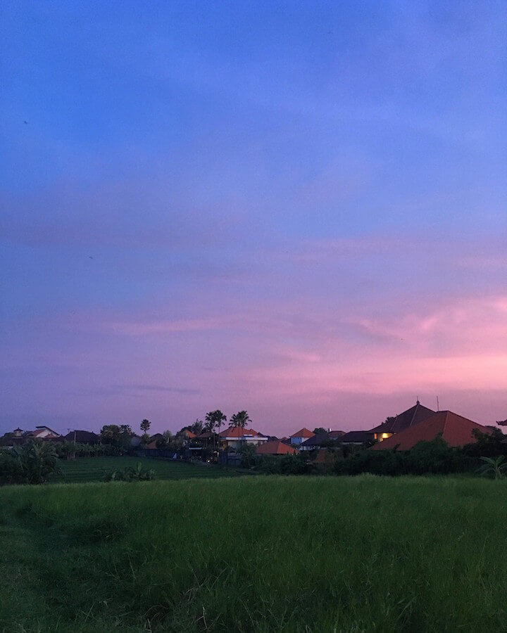 Sunset over rice paddies in Canggu, Bali