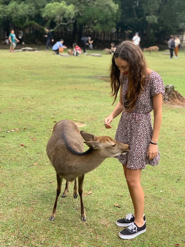 Girl and deer in Nara Park, Japan