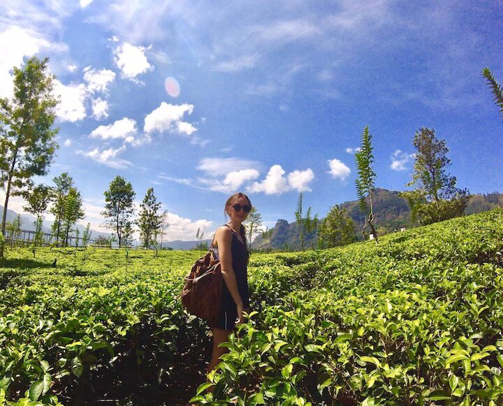 Girl in tea plantations in Sri Lanka
