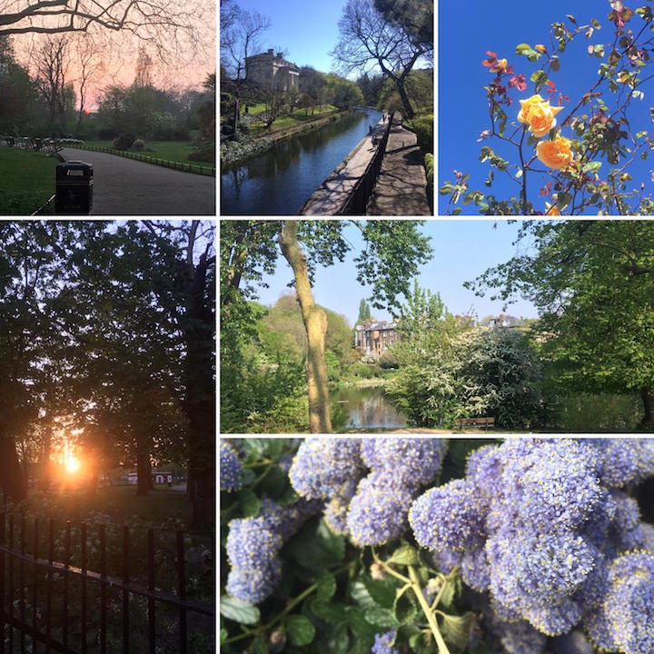 Daily sanity walk collage